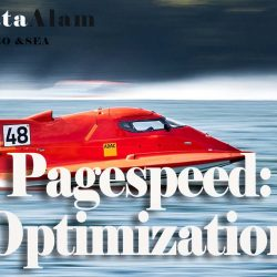 PageSpeed: Optimization of the Page Loading Speed & Core Web Vitals