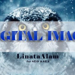 Your Digital image – Find the Right Agency for Your Online Marketing